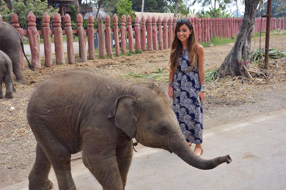 Ayutthaya Elephant Kraal